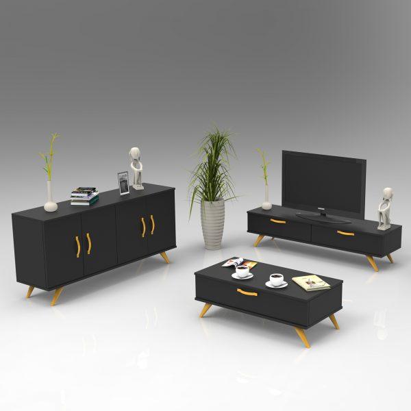 Siyah renk tv ünitesi konsol ve orta sehpa